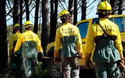 Contratação de cinco sapadores florestais