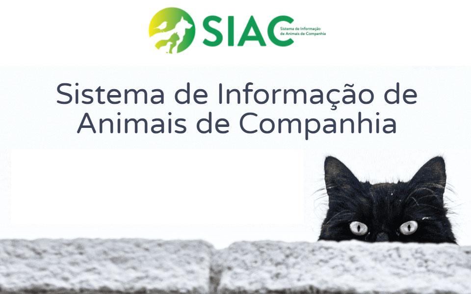 Decreto-Lei 82/2019 (SIAC) – Identificação, registo e licenciamento dos animais de companhia